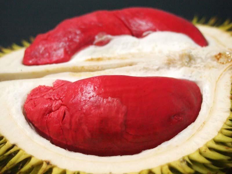 20131002_Colorful Durian in Malaysia_005