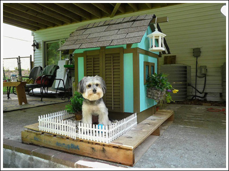 20140307_Designer dog houses for spoiled pets_008