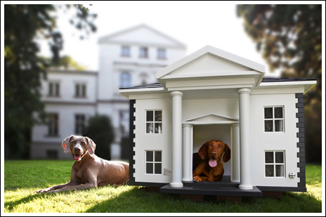 20140307_Designer dog houses for spoiled pets_014